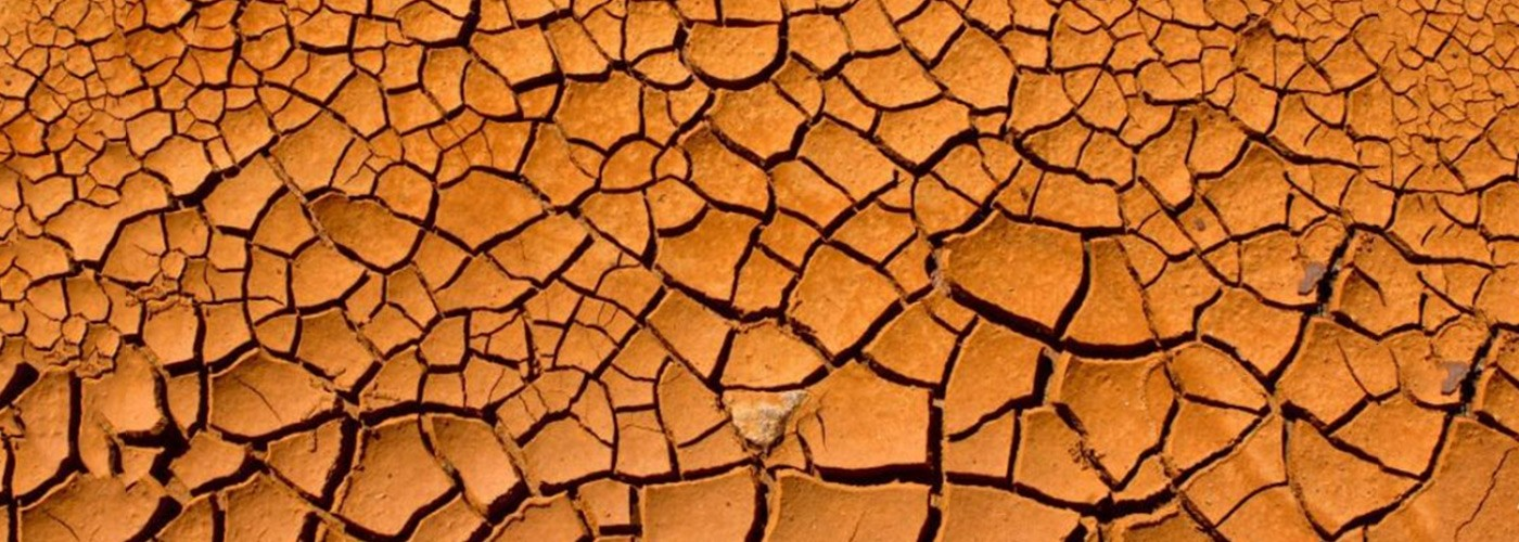 Burnt soil affected by drought