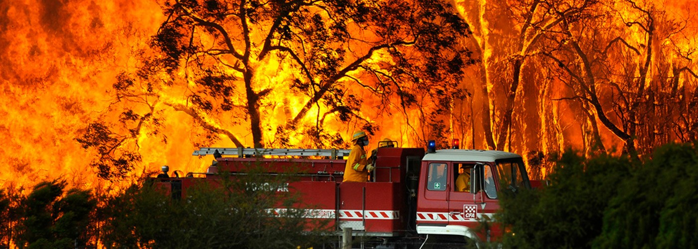 Fire fighting of a wild bush fire